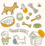 做宠物用品类微商产品